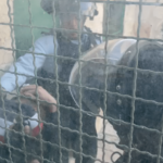 Israeli police torturing and arresting Muslim youth